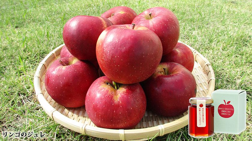 信州小布施 栗菓子竹風堂 リンゴのジュレ 紅玉リンゴ